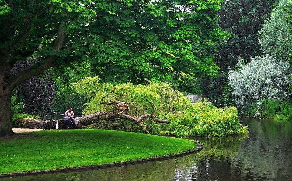 озеро в парке Вондела в Амстердаме